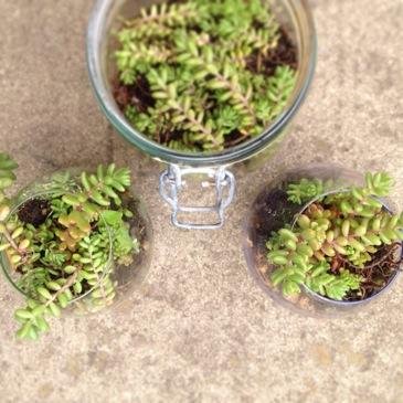 image from http://kswjewellery.typepad.com/.a/6a00e5505b51b5883301a3fd0a6096970b-pi